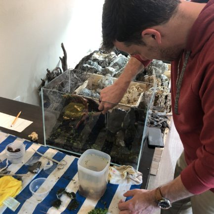 Aquascaping Workshop