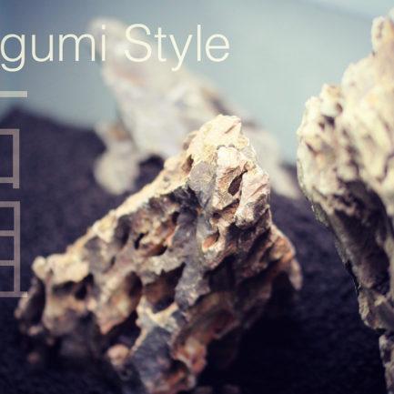 Aquascape Workshop – Iwagumi Style