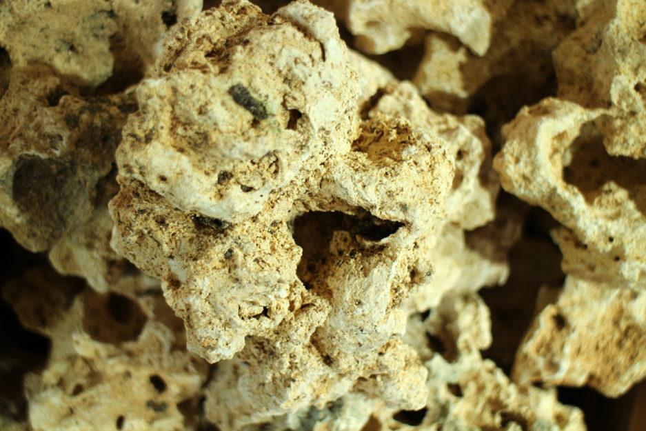Mountain Coral Stone