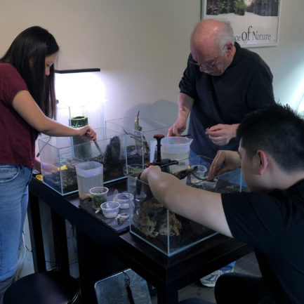 Nano Aquascape Workshop