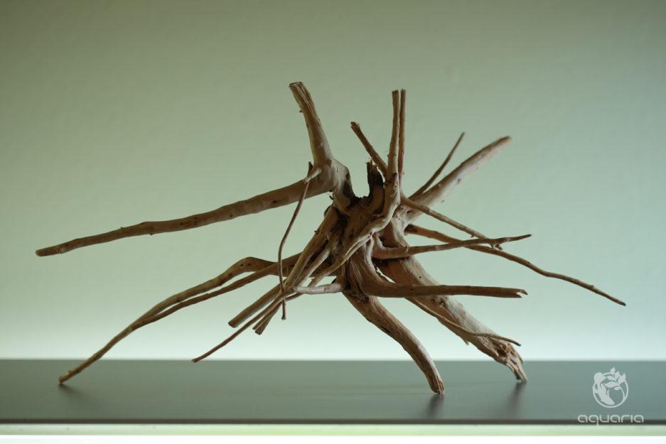 Slim Wood